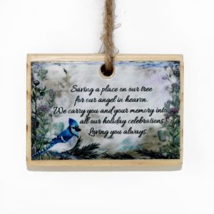 sign from heaven blue jay