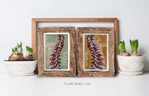 spine vertebrae art prints by noelle rollins Art