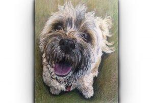 dog portrait gift