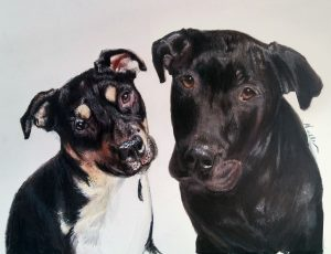 two dogs artwork drawing
