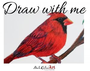 learn to color a cardinal