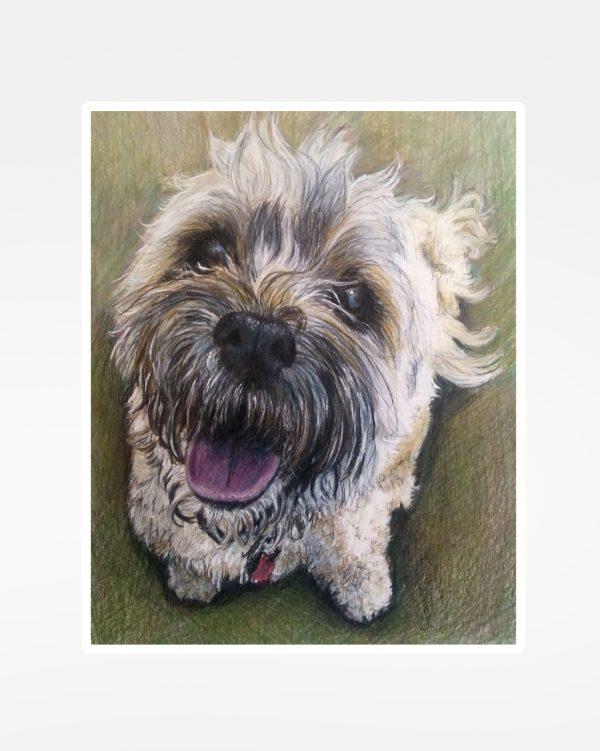 Cooper the dog muddy art